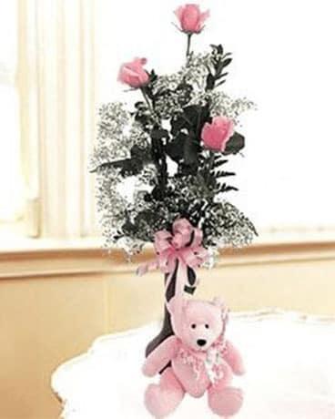 3 Rose Bud Vase Teddy Bear In Indianapolis In George Thomas Florist