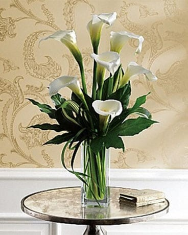 Simply Calla Lily In Indianapolis In George Thomas Florist