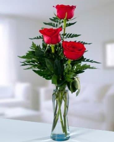Rose Bud Vase 3 In Indianapolis In George Thomas Florist