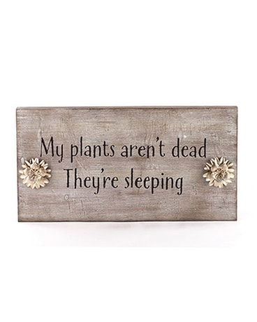 My Plants Aren't Dead, They're Sleeping Custom product