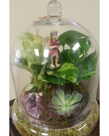 Plants & Dish Gardens Delivery Tampa FL - Buds, Blooms & Beyond