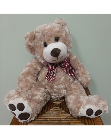 Plush Medium Teddy Bear Gifts