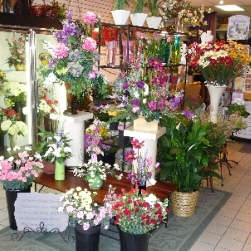 About moehring woods flowers grosse pointe woods mi florist we welcome your questions and comments about this privacy statement mightylinksfo