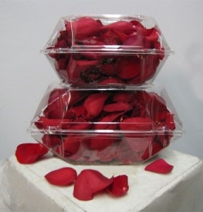 Red Rose Petals Boxed