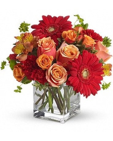 Santa Fe Sunset Bouquet by Teleflora Flower Arrangement