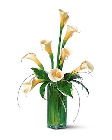 White Callas Flower Arrangement