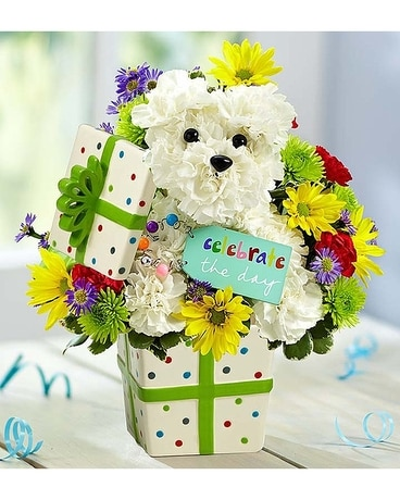 Party Dog Flower Arrangement