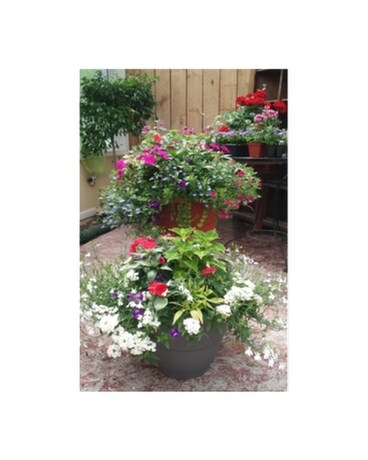 Extra Large Porch Planter