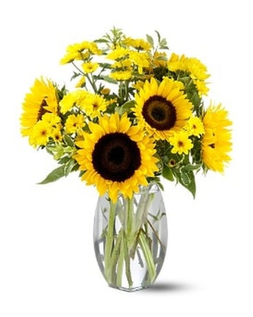 Sunflower Splash Flower Arrangement