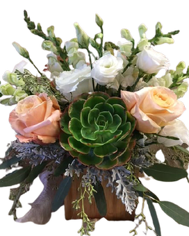 Succulent Dream Flower Arrangement