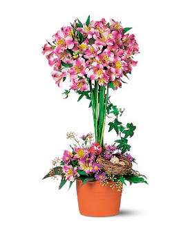 Alstroemeria Topiary Flower Arrangement
