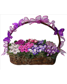 Violet Garden Basket Flower Arrangement