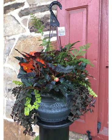 Custum Hanging Basket Custom product