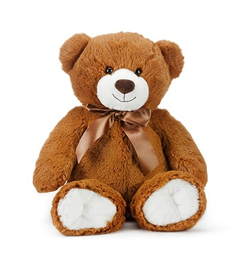 Honey Bear (MEDIUM)