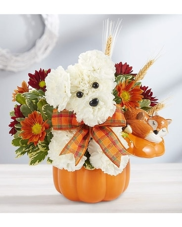 3D a-DOG-able Flower Arrangement