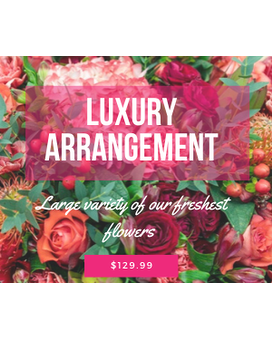 Luxury Arrangement Flower Arrangement