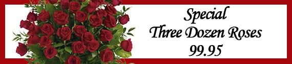 Special Three Dozen Roses