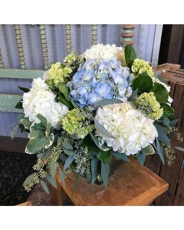 The Shoppe's - Mixed Hydrangea Garden Flower Arrangement
