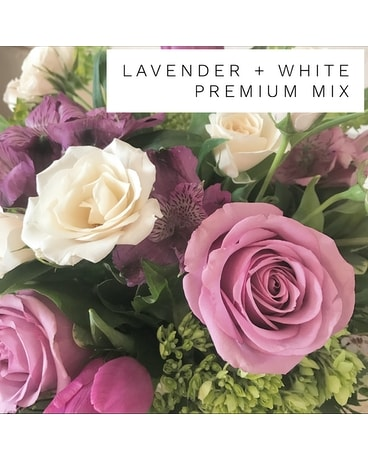 Lavender and White Mixes