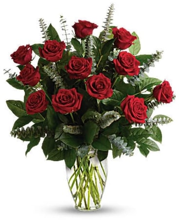 1 Dozen Long Stem Red Roses Flower Arrangement