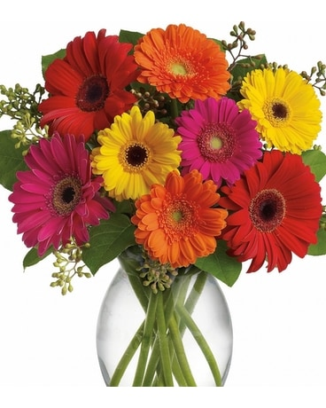 Wicked Awesome Assorted Gerberas Flower Arrangement