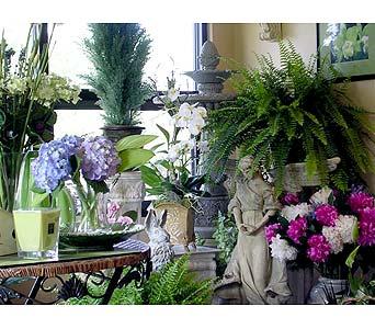 About Touch Of Class, Ltd  - Greenville, SC Florist