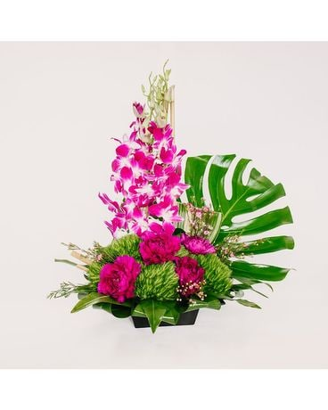 Abb 2027 Purple Orchid Island Flower Arrangement