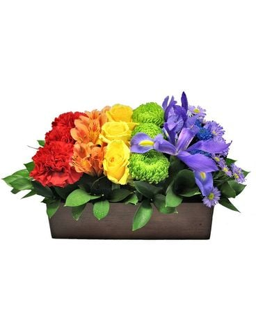 Nature's Rainbow Flower Arrangement