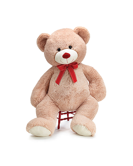 Franklin Bear Gifts