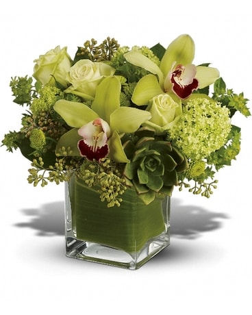 Rainforest Cube Flower Arrangement