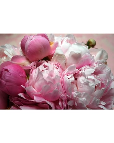 Posey Pefect Peony Vase Flower Arrangement