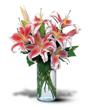 Simply Stargazer Lilies Flower Arrangement