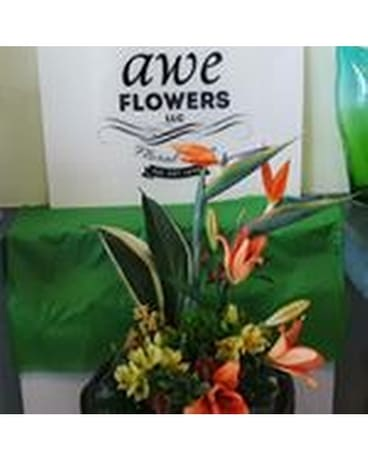 AWE Florist Birds of Paradise Flower Arrangement