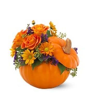 Teleflora's Pumpkin Patch Bouquet Flower Arrangement