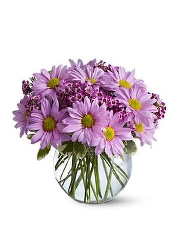 Delightfully Daisy Flower Arrangement