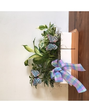 GeNell's Original Back to School Succulents Plant