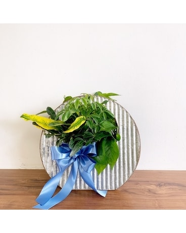 GeNell's Original Hoop Planter Flower Arrangement