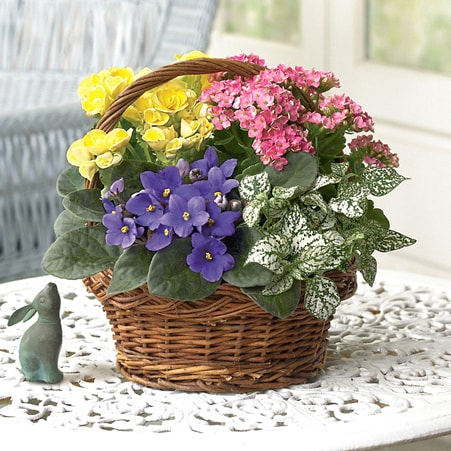 Spring Basket Planter
