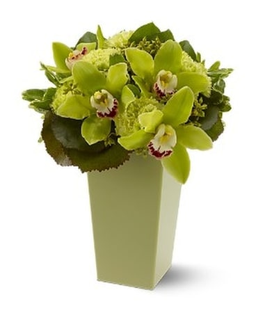 Green with Envy Flower Arrangement