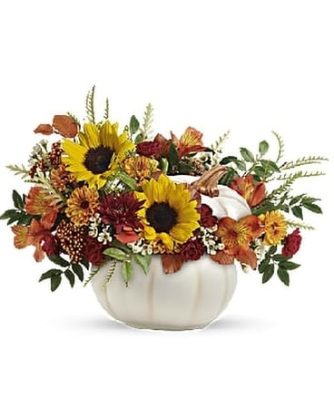 Teleflora Enchanted Harvest White Pumpkin