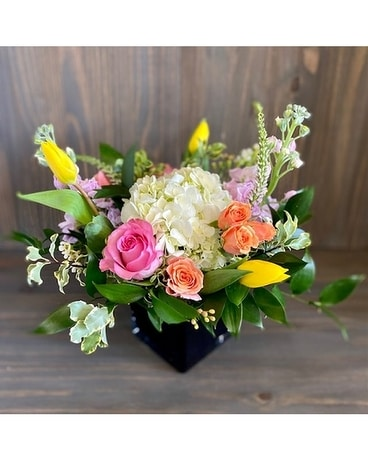 Redbud Floral Norman, OK Locally Owned Florist