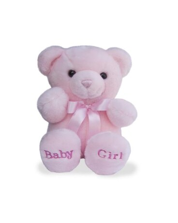 Baby Girl Bear Gift Basket