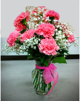 1 dz Pink Carnations With Babies Breath Flower Arrangement