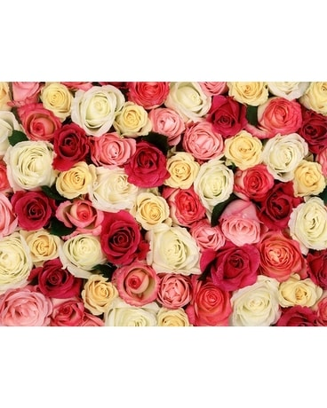 Dozen Roses - Mixed Flower Arrangement