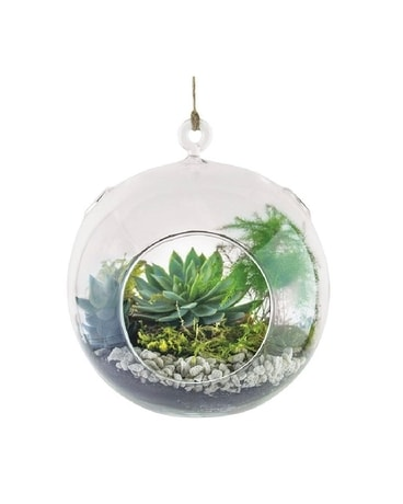 Floating Orb Garden Plant