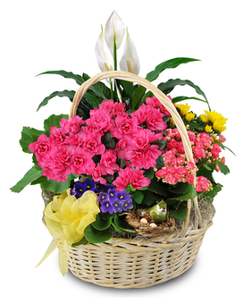 Blooming Bird Garden Basket Basket Arrangement