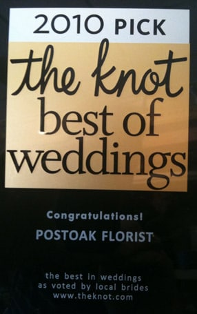 2010 Pick - The Knot best of weddings
