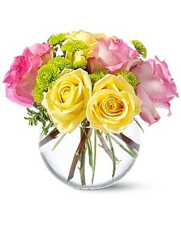 Teleflora's Pink Lemonade Roses - by Leary's Flori Flower Arrangement