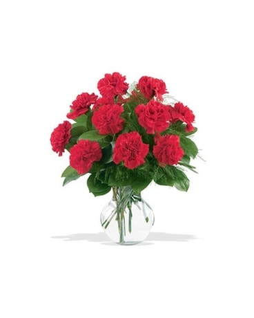 12 Red Carnations - by Leary's Florist Flower Arrangement