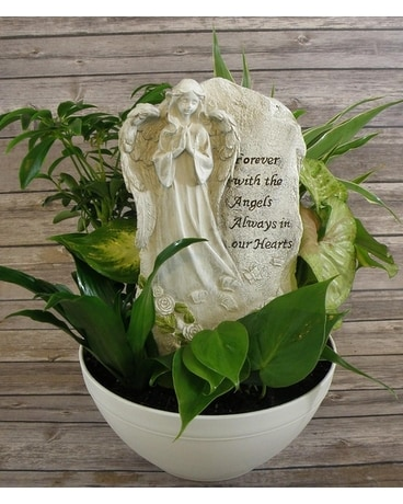 Angel Plaque Dish Garden Plant